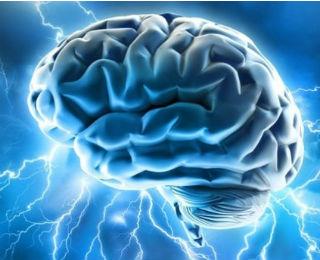 Brain_Electrified