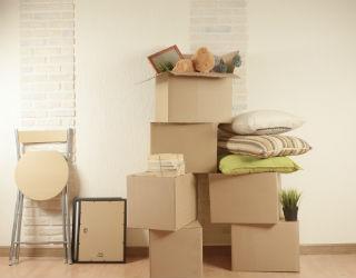 Downsizing Moving Boxes