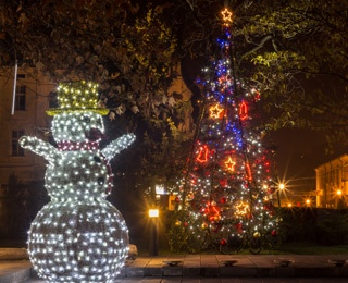christmas lights and a snowman that is lit up